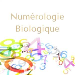 Formation Numerologie, elleOZ